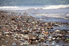 Pásticos mar