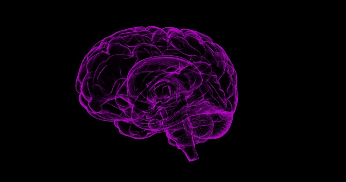 """Charla sobre """"El cerebro humano: una perspectiva científica y filosófica"""""""
