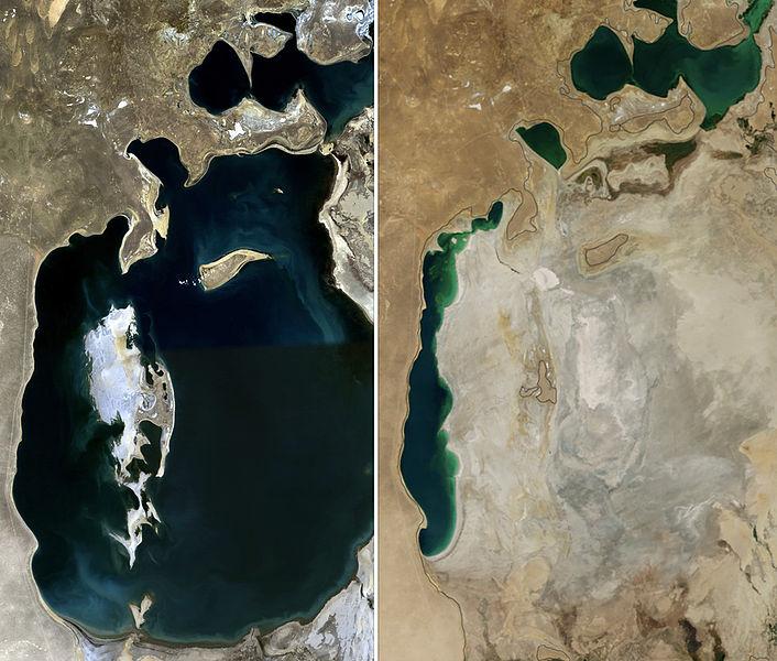 El cultivo que convirtió un mar en undesierto