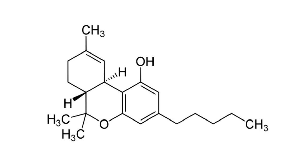Entrando en el mundo de los cannabinoides, ¿qué son? y ¿cómo seclasifican?