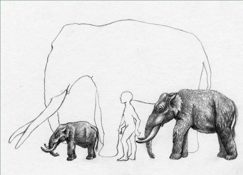 La Regla Insular. Enanos y gigantes. Capítulo2